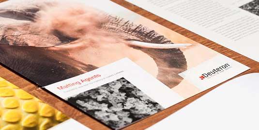 Produktblatt von Deuteron für Matting Agents