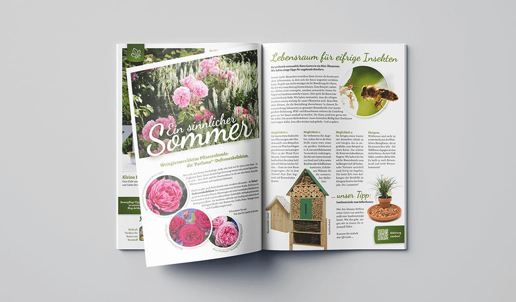 Foto von Inhaltsbeispielen des Kundenmagazins im neuen Corporate-Design von Weingärtner Gartencenter
